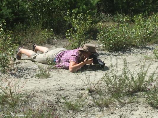 lying on very hot sand