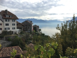 A stroll in the Lavaux 18