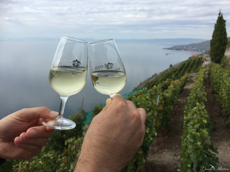 A stroll in the Lavaux 23