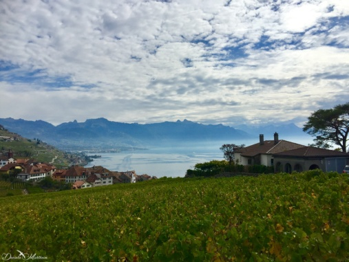 A stroll in the Lavaux 25