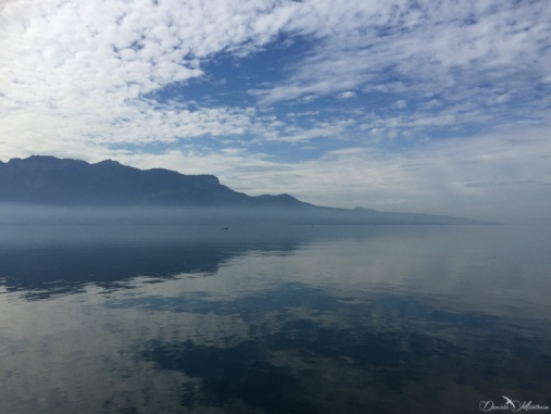 A stroll in the Lavaux 5