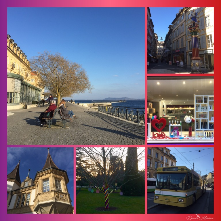 daniela, danielamuehlheim, mühlheim, ladybird, exploring, earth, abundance, nature, city