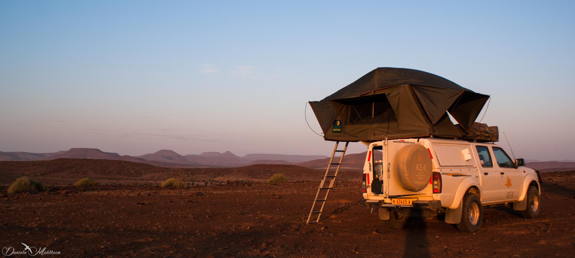 daniela, danielamühlheim, muehlheim, ladybird, exploring, earth, abundance, nature, africa, namibia,
