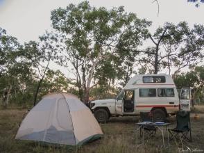 daniela, danielamühlheim, muehlheim, ladybird, exploring, earth, abundance, nature, australia