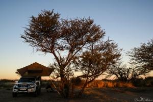 botswana, africa, daniela, danielamühlheim, muehlheim, ladybird, exploring, earth, abundance, nature, australia