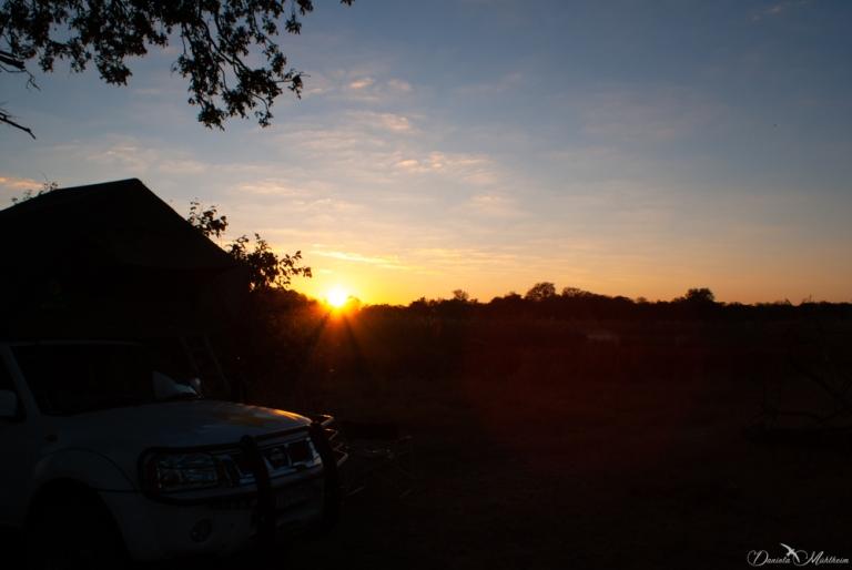 africa, botswana, sunrise, daniela, danielamühlheim, muehlheim, ladybird, exploring, earth, abundance, nature