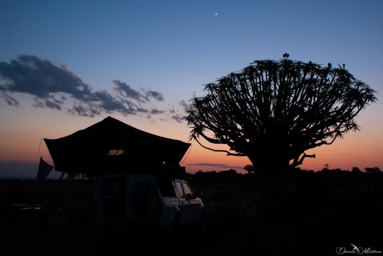 namibia, africa, daniela, danielamühlheim, muehlheim, ladybird, exploring, earth, abundance, nature, australia