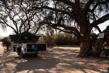 daniela, danielamühlheim, muehlheim, ladybird, exploring, earth, abundance, nature, africa, namibia