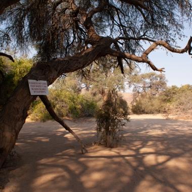 Bushcamping-7