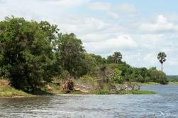 Murchison Falls-34
