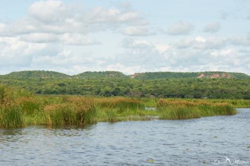 Murchison Falls-37