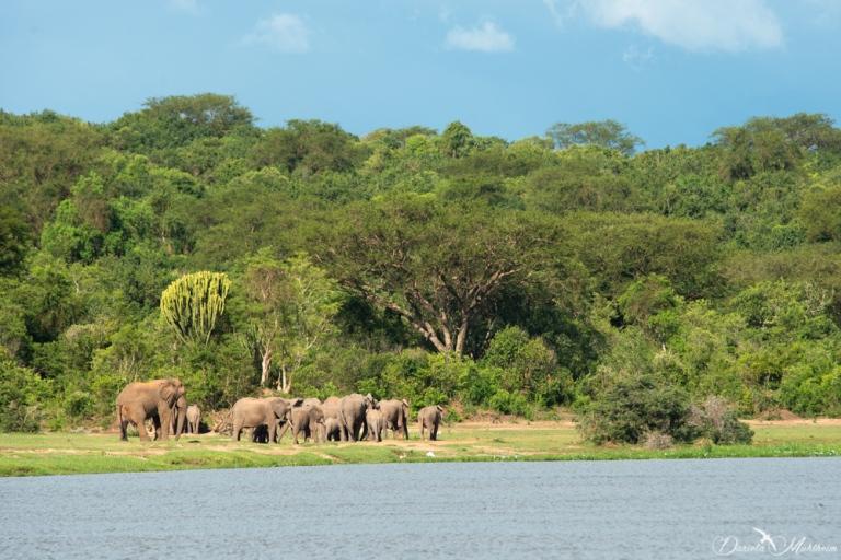 Murchison Falls-39