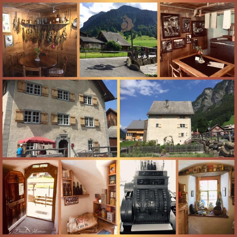 daniela, muehlheim, danielamühlheim, ladybird, exploring, earth, abundance, Switzerland
