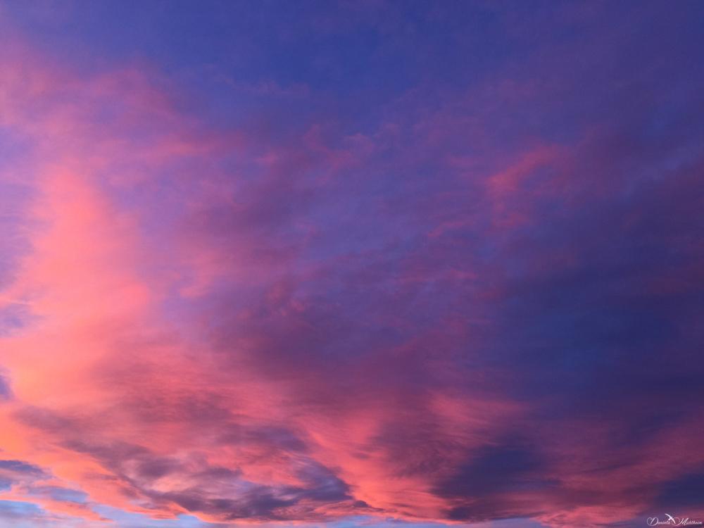 daniela, muehlheim, danielamühlheim, ladybird, exploring, earth, abundance, Switzerland, cloud, sunset