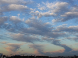 daniela, muehlheim, danielamühlheim, ladybird, exploring, earth, abundance, Switzerland, cloud, Sydney, sky