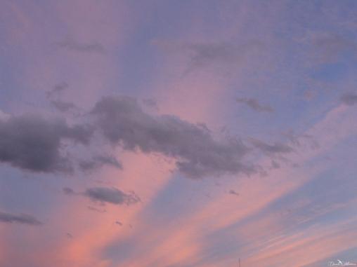 Skies-8