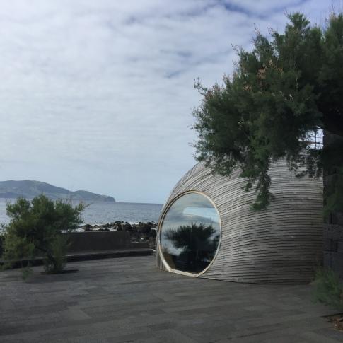 daniela, muehlheim, danielamühlheim, ladybird, exploring, earth, abundance, Azores, Pico