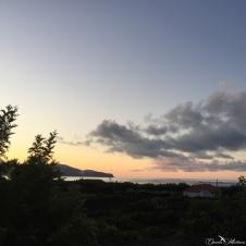 daniela, muehlheim, danielamühlheim, ladybird, exploring, earth, abundance, Azores, Pico, ocean
