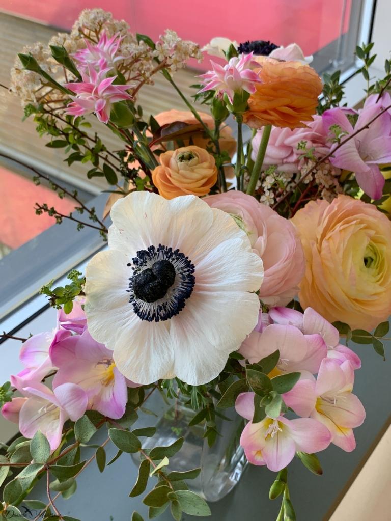 daniela, muehlheim, danielamühlheim, ladybird, exploring, earth, abundance, stayathome, flowers, spring, gratitude
